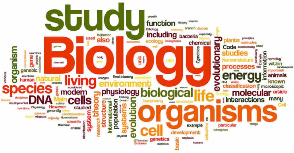 Biology IGCSE Tutor